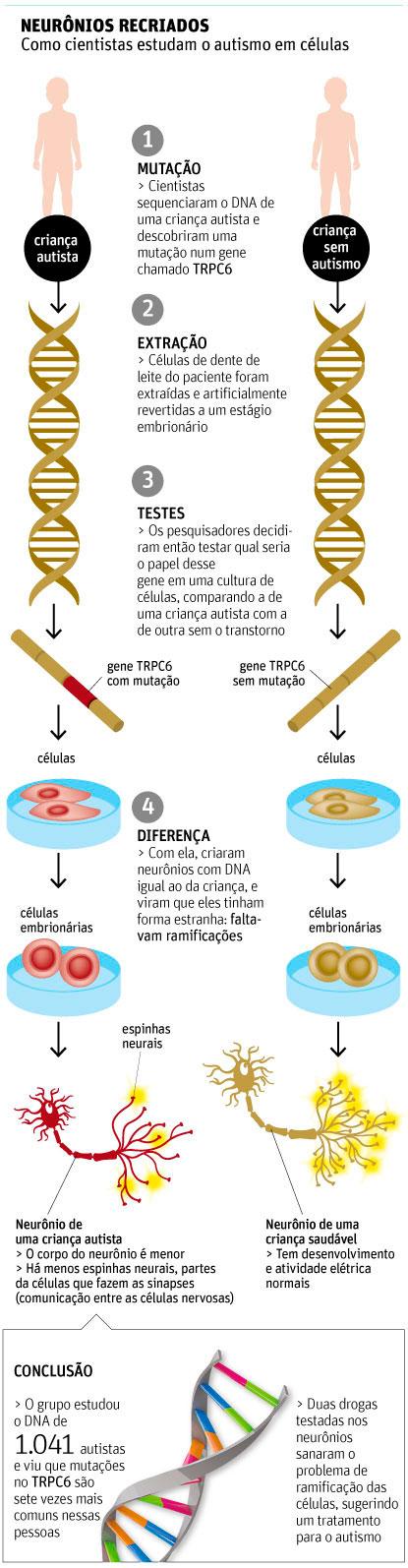 Desenho representando o gene de uma pessoa com autismo e outro de pessoa sem a doença