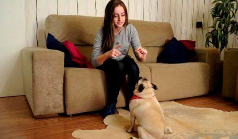 Jovem de 17 anos, sentada em um sofá, faz gestos de Libras para uma cadelinha na sua frente, em cima de um tapete.
